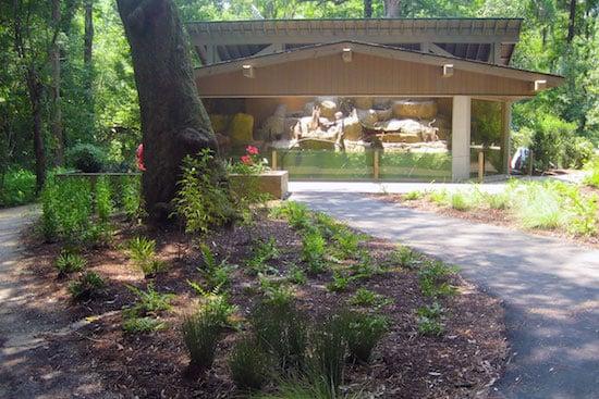 Otter exhibit at Brookgreen Gardens.