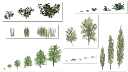 Thirteen times as many high-quality 3D plants from VBvisual are now available.