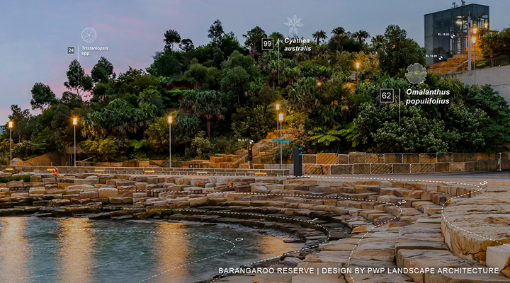 Pwp Landscape Architecture Renews Sydneys Waterfront With Barangaroo